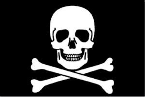 grote-piratenvlag