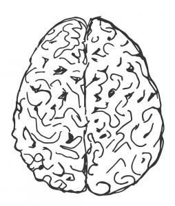 brain-1602757_1280
