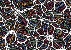 patronen hersenen